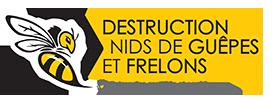 Destruction nid de Guêpes et Frelons